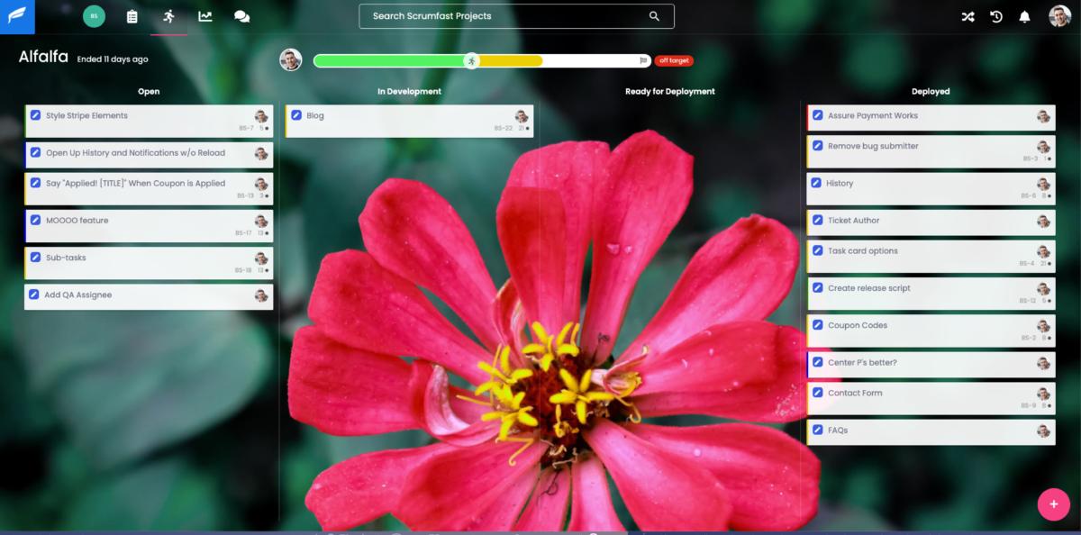 Screenshot of the Sprint View of Scrumfast